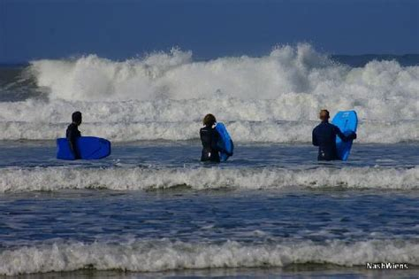 look at the waves picture of cannon beach surf cannon