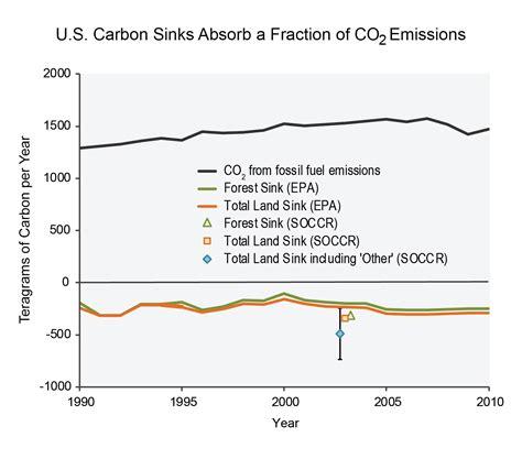 Define The Term Carbon Sink by Carbon Sink Definition Biology Sinks Ideas