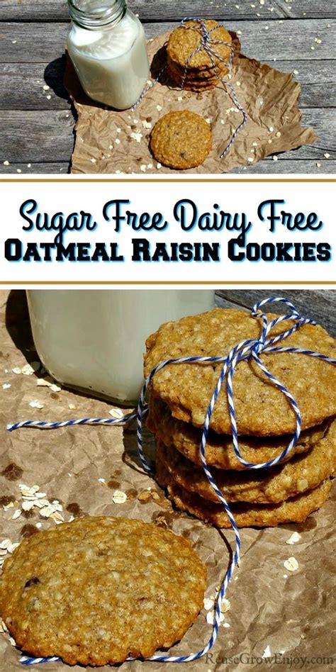 Not just oatmeal cookies, she also makes double and even triple batches of chocolate chip cookies, snickerdoodles, and sugar cookies (which is more than enough and we're usually snacking on leftover cookies well into the new year). Sugar Free Dairy Free Oatmeal Raisin Cookies - Reuse Grow Enjoy