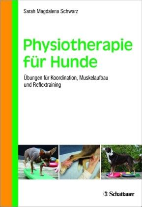 physiotherapie fuer hunde
