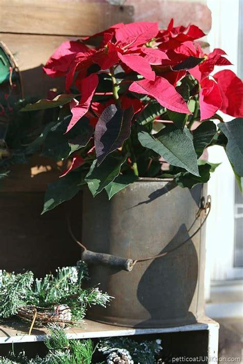 christmas porch decorations   poinsettias