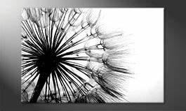Schwarz Weiß Wandbilder : das leinwandbild dreihundert 300 200x70cm wandbilder xxl ~ Watch28wear.com Haus und Dekorationen
