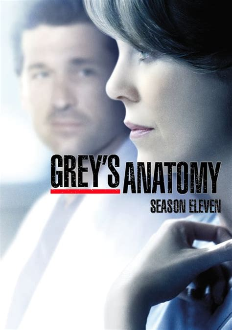 greys anatomy season  full episodes mtflix