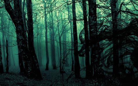 Dark Forest Backgrounds