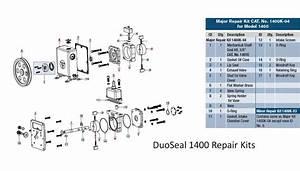 Major Repair Kit  Duoseal 1400 Pumps With Mechanical Seal