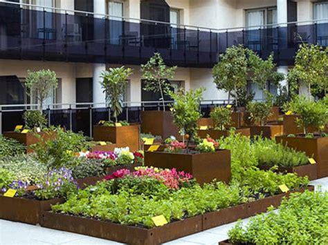 orti sul terrazzo il mio orto sul balcone eco idee