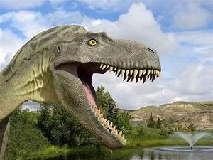 SUPER ANIMAL: Dinosaur