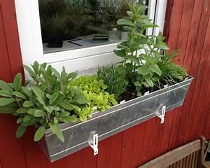 Gräser Für Balkonkasten : k belbepflanzung pflanzen f r die k belbepflanzung als ~ Michelbontemps.com Haus und Dekorationen