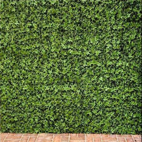 artificial wall artificial green wall manufacturer
