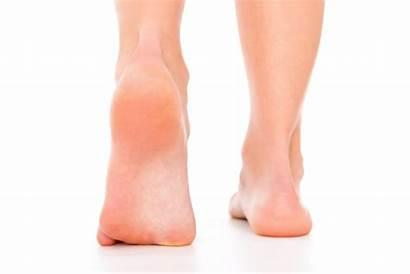 Foot Heel Pain Clipartmag