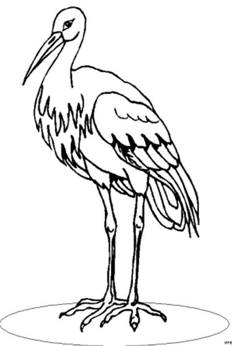storch mit duennen beinen ausmalbild malvorlage fruehling