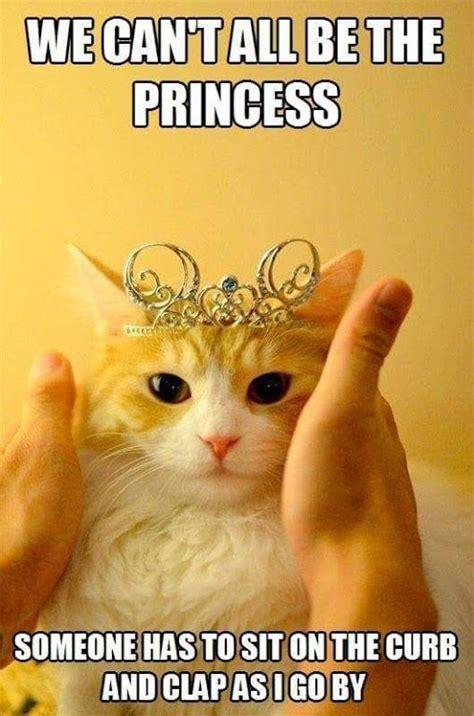 Super Happy Meme Face - 25 best ideas about happy memes on pinterest happy face meme welcome meme and so cute meme