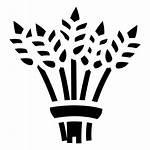 Bundle Grain Svg Icon Icons Transparent