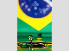 Bandeira do Brasil Brazil flag a gallery on Flickr