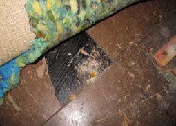 identifying asbestos asb services