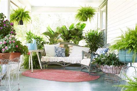 decorate  porch  ferns  flowers diy