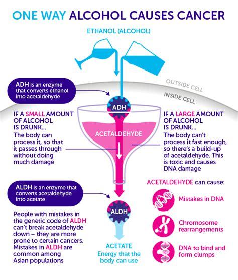 alcol cancro blueprintsofhope org agemony