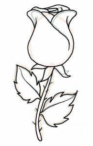 Schöne Muster Zum Selber Malen : wenn sie eine sch ne rose einfach malen wollen dann sind sie richtig gekommen schauen sie mal ~ Orissabook.com Haus und Dekorationen