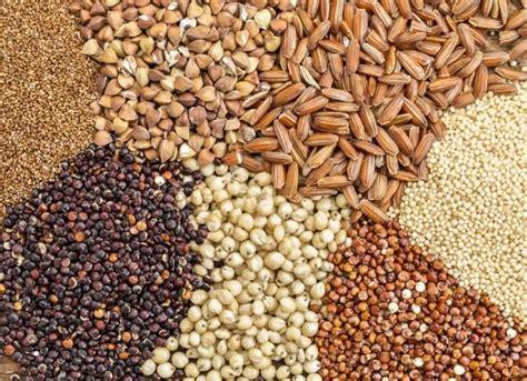 efectos del consumo adecuado de fibra dietetica en la