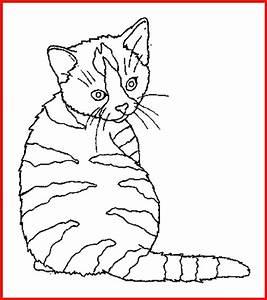 Katzenbilder Zum Ausmalen Und Ausdrucken 3 Rooms Project