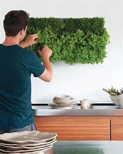 Pflanzen An Der Wand : gr ne wand raffinierter blickfang f r die wohnung ~ Articles-book.com Haus und Dekorationen