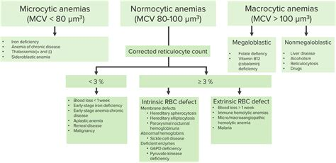 Microcytic, Macrocytic & Normocytic Anemia