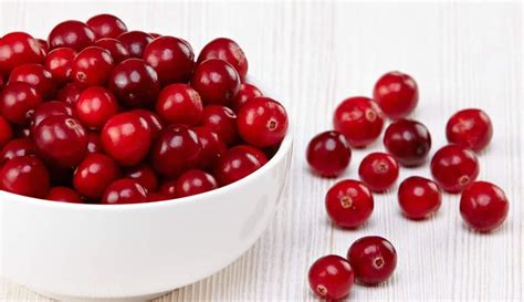 how to cranberries is cranberry a good choice for liver health liversupport com