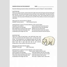 Darwin's Natural Selection Worksheet Answers  School  Worksheets, Natural Selection, School