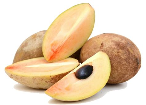 Makanan Sehat Makanan Sehat Untuk Ibu Hamil Makanan 120 Manfaat Dan Khasiat Buah Sawo Untuk Kesehatan Khasiat