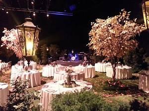 inspire Wedding Ideas for Designer for Enchanted Forest ...