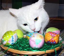 cat egg 22 must see handmade cat gifts for easter band of cats