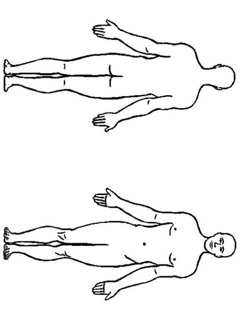 human body coloring pages  printable human body