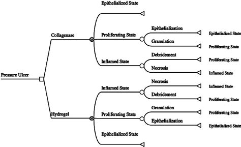 Wound Assessment Diagram by Markov Tree Diagram Comparing Collagenase Ointment To