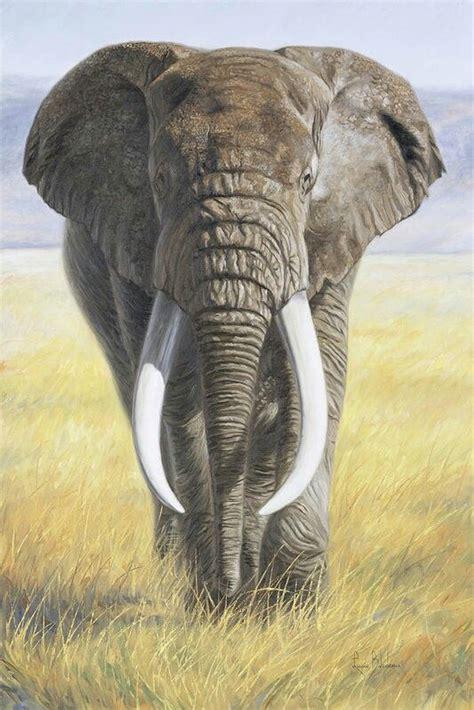 pin  radhika vora  artwork elephants animal