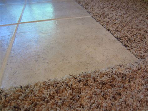 luxury vinyl tile transition to carpet carpet nrtradiant