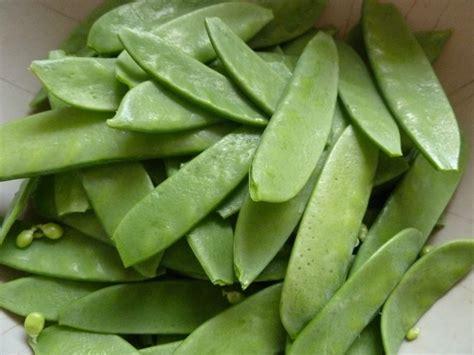 cuisiner des pois gourmands les bienfaits de 20 légumes à inclure dans