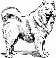 Samoyed Dog Clip Art
