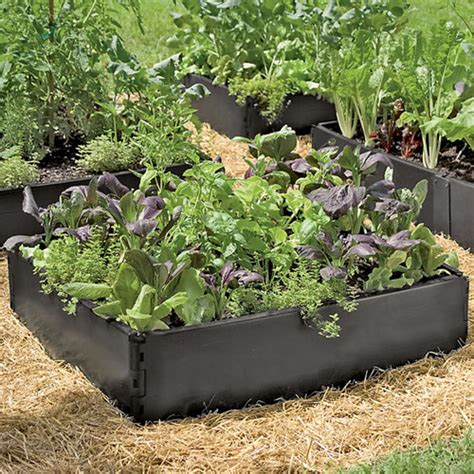 above ground garden 10 best raised garden beds in 2016 garden beds