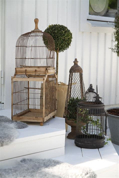 17 best images about aviary inspiration on
