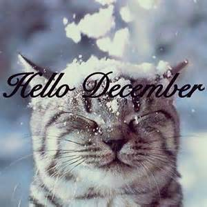 First Day Of December 2015 Quotes