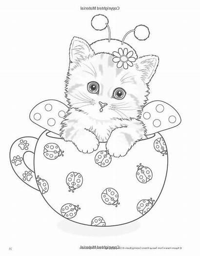 Coloring Teacup Cat Kittens Animal Kitten Kayomi