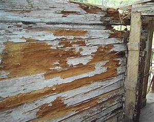 Eternitplatten Entsorgen Kosten : heraklithplatten entsorgen d mmen und entsorgen von heraklithplatten holzwolle leichtbauplatte ~ Watch28wear.com Haus und Dekorationen