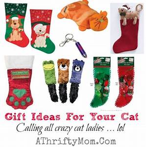 Christmas Gift Ideas for your CAT Calling all crazy cat