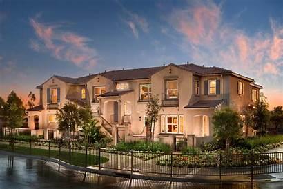 Irvine Homes Woodbury Houses Ivy 2009 State
