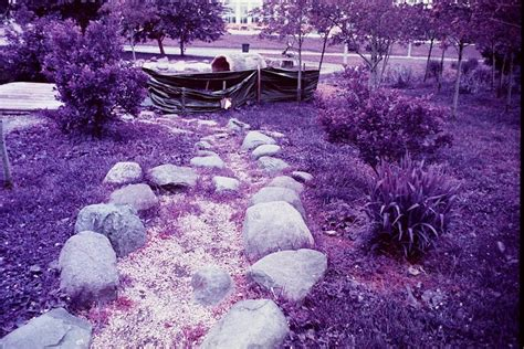 Review Lomography Lomochrome Purple 35mm New Emulsion