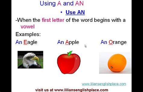 what is the use of lesson 1 using a and an youtube
