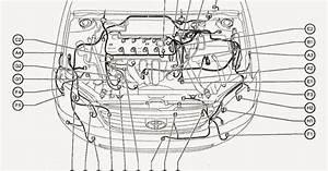 Manuales De Mecanica  Esquema Electrico Y Sensores Motor