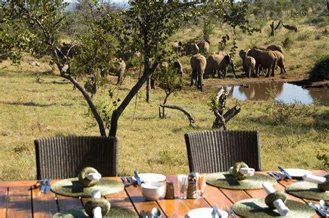 royal madikwe lodge malaria  madikwe game reserve