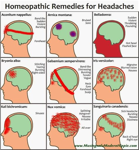 homeopathic remedies   common headaches
