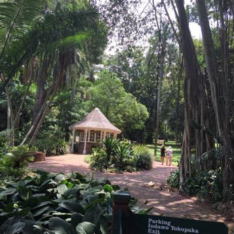 Botanischer Garten Durban by Durban Botanical Garden Foto Di Durban Botanic Gardens